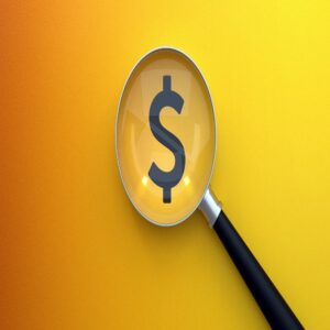 Dollar icon under magnifying glass