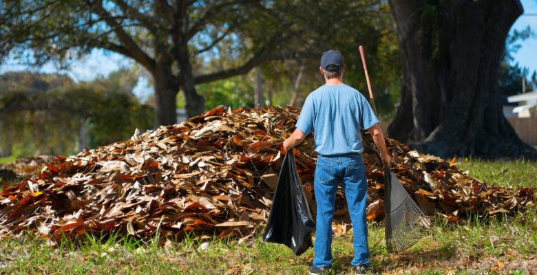 man with rake standing in front of large pile of leaves