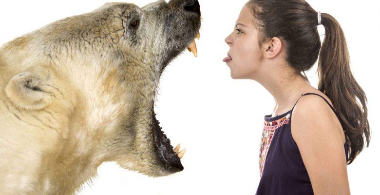 young woman poking tongue out at growling polar bear